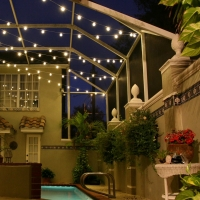 Landscape Canopy Lights