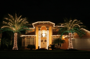 Holiday Lights  tampa