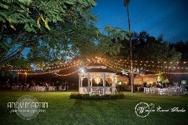 tampa bay event lighting
