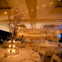 wedding lights rental